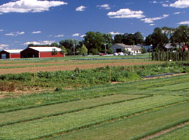Photo of Snyder Research and Extension Farm.